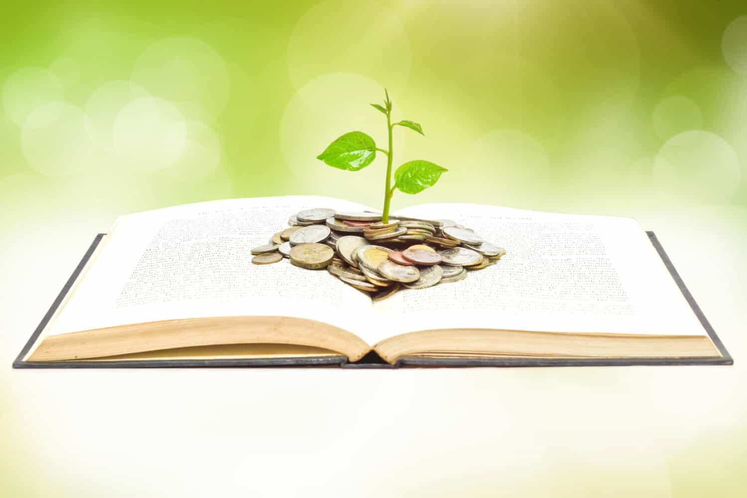 Loose change in an open book is sprouting a small plant