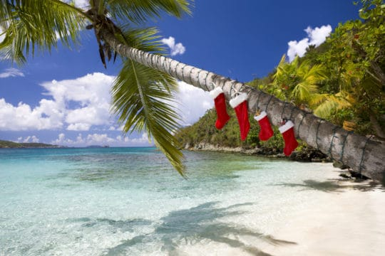 Christmas stockings hung up on a palm tree in July