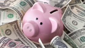 Make sure you have enough savings to stay afloat
