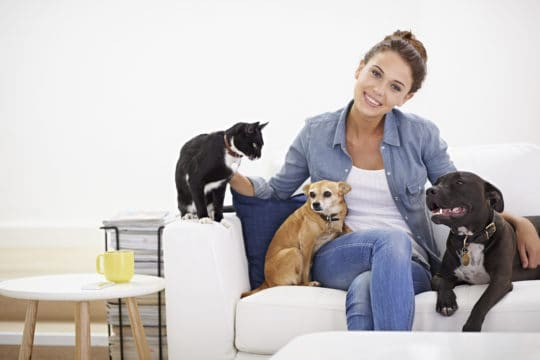 Young woman sitting on the couch with her cat and two dogs.