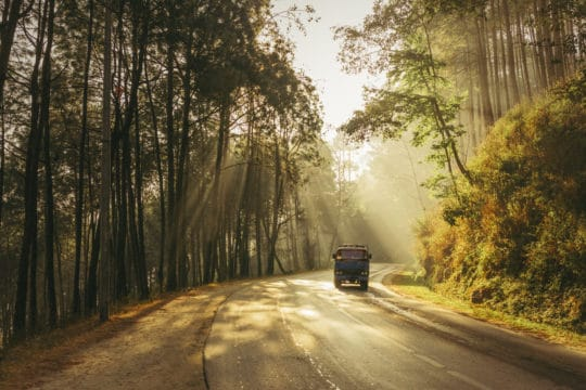 Early morning misty road in the forest in Nepal.
